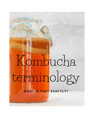 Kombucha Terminology – What is that exactly?