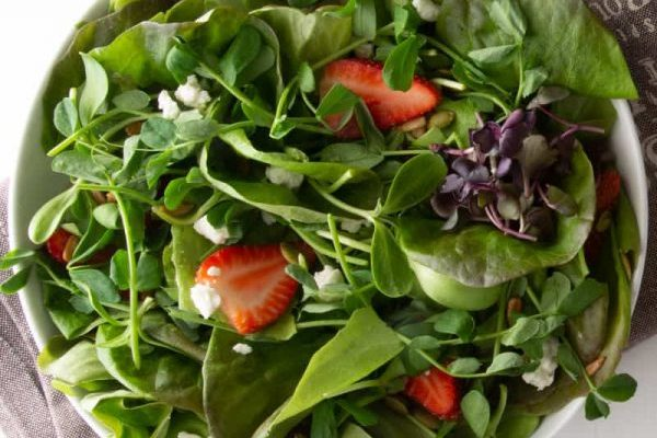 Microgreens Mix with Sherry Balsamic Vinaigrette