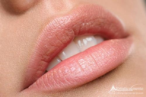 Frasi, citazioni e aforismi sulle labbra - Aforisticamente ...