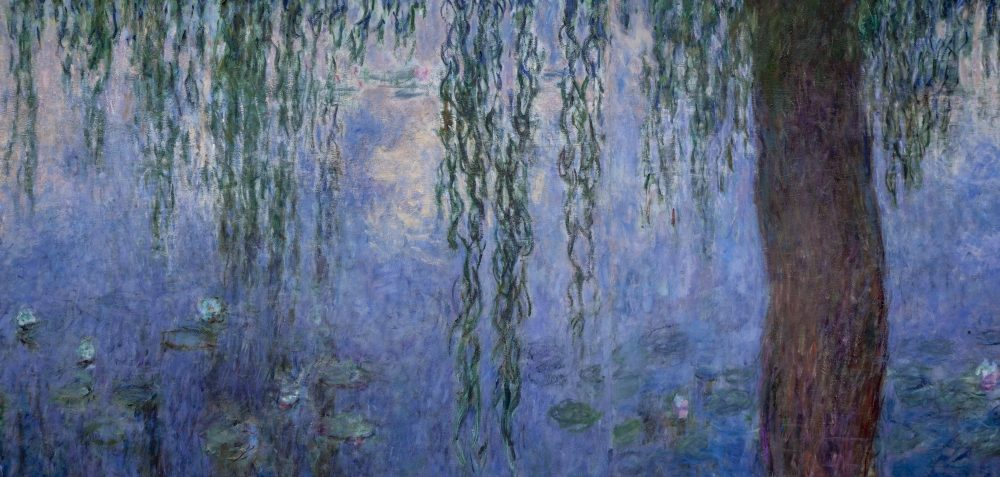 The Water Lilies American Abstract And The Last Monet AFMO