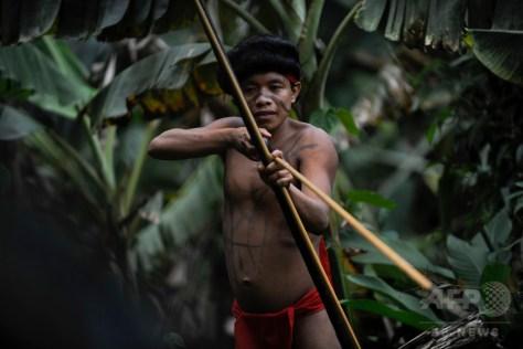 ブラジル国境から19キロメートルのベネズエラ南部アマソナス州にある先住民ヤノマミの集落イロタテリで狩猟のポーズをとるヤノマミの男性(2012年9月7日撮影、資料写真)。(c)AFP/Leo RAMIREZ
