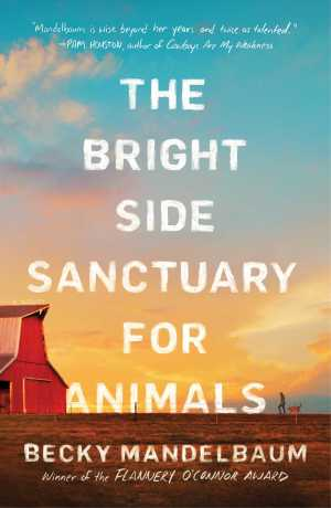 bright side sanctuary for animals