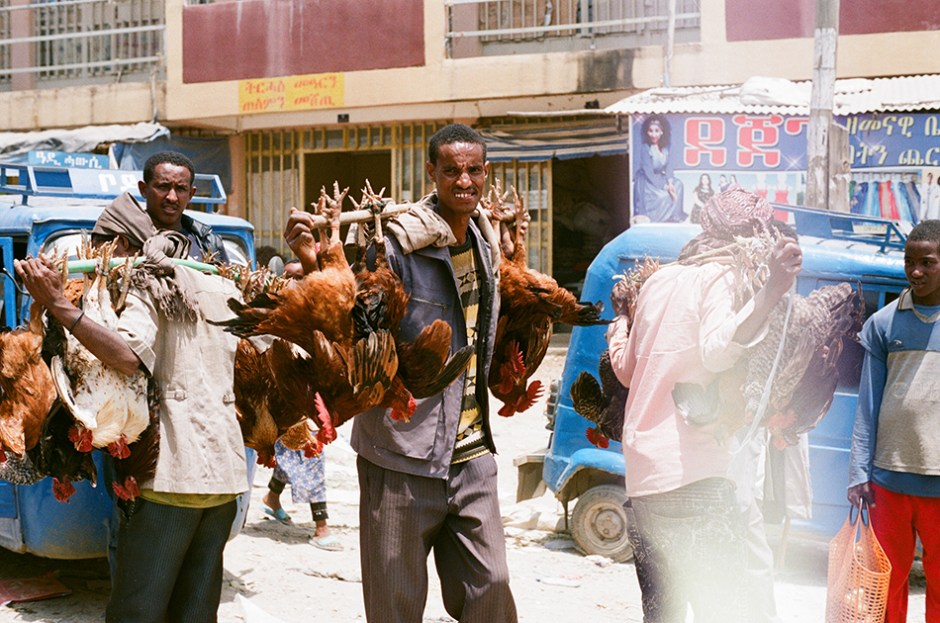11 - Selling chickens in Mek'ele market
