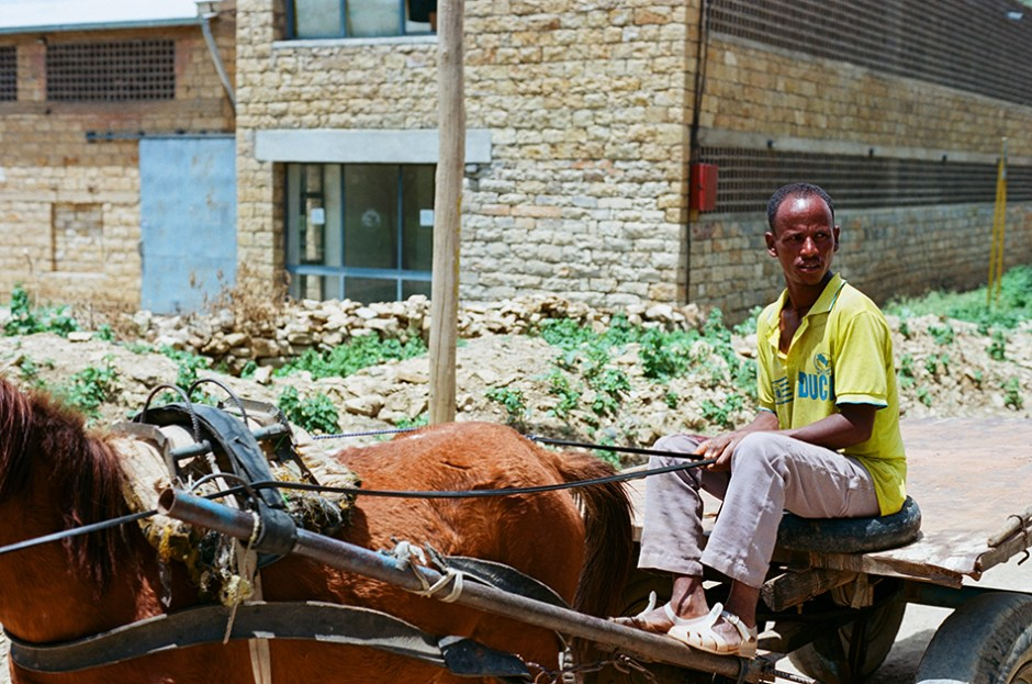 19 - Man with horse and cart in Wukro, Tigray