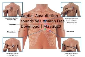 Cardiac Auscultation Sounds by Littmann Free Download