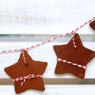 CINNAMON STARS: A TUTORIAL