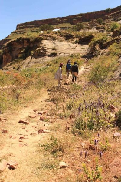 (7) 連日歩い歩いて歩く