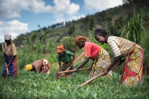 JICA、中小企業・SDGsビジネス支援事業でアフリカ15件採択!次回公示は6月を予定!