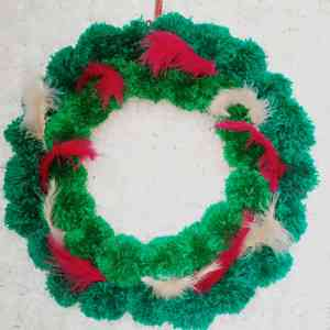 Green bubble Yarn with red and white feather