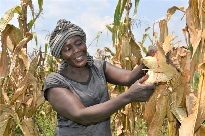Reaching Farmers