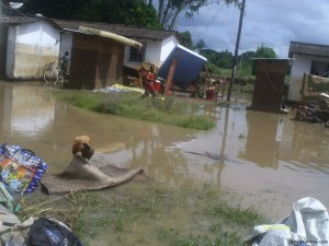 About 70,000 people have been rendered homeless