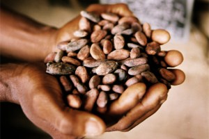 Growth will be robust if commodity prices recover