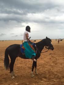 Swift on horseback