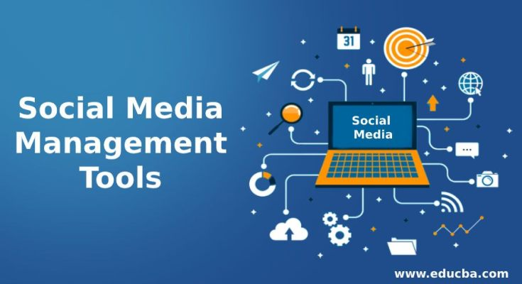Social Media Management Tools for Your Business