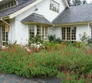Cedar Garden Bed&Breakfast