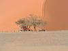 sunway-namibie
