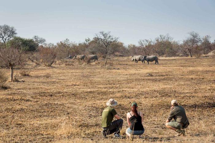 africa-on-foot-safari-walking