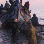 Pesca pirata Senegal sbarco piroghe