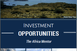 Ethiopia Investments – Many Profitable Projects on Offer
