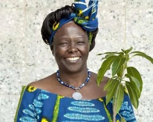 Wangari Maathai carrying plant photo and -c-Patrick Wallet