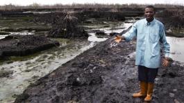 Image result for Environmental activists decry slow progress of Ogoni cleanup