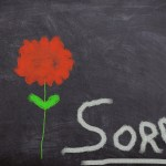 "Sermon – ""I am Sorry"""