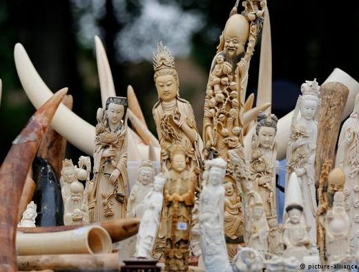 ivory market CITES ban | Journal of African Elephants