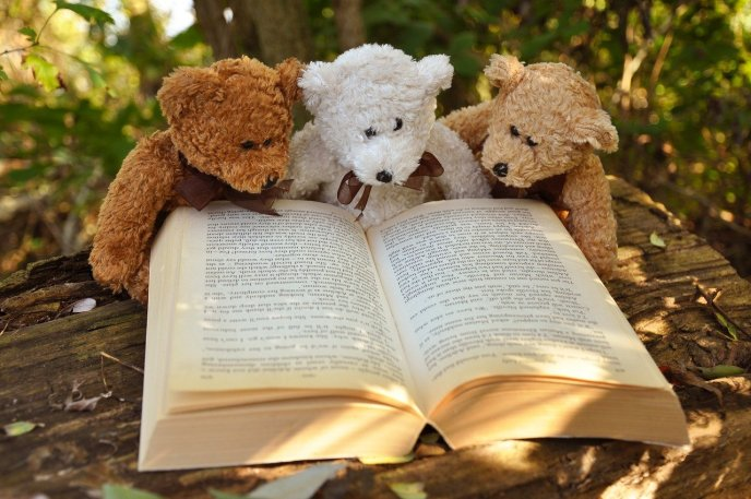 World Book Day - get stuck in a good book