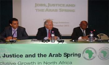 « Le printemps arabe était une énigme puisqu'il y a une contraction économique au-delà des moteurs politiques. Certains facteurs économiques sont la base d'explosion politique et ont alimenté la révolution. ...