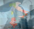 70 entreprises italiennes seront en Tunisie