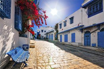 Sidi Bou Saïd a été classé le 13ème village le plus charmant au monde par le site WhenOnearth.net
