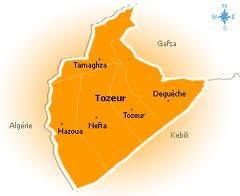 Les opérations de plantation des arbres fruitiers dans les oasis de Tozeur ont enregistré une baisse