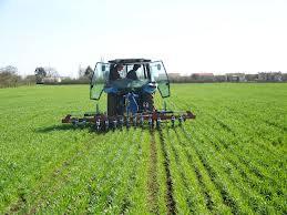 L'Agence de promotion des investissements agricoles (APIA) à Kasserine a approuvé en 2013