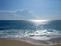 L'enveloppe consacrée au nettoyage de 130 plages tunisiennes est