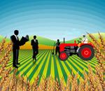 Le directeur de l'agence de promotion des investissements agricoles(APIA)