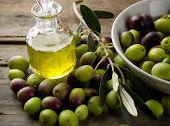 La production espagnole d'huile d'olive devrait plus que doubler en 2013-14