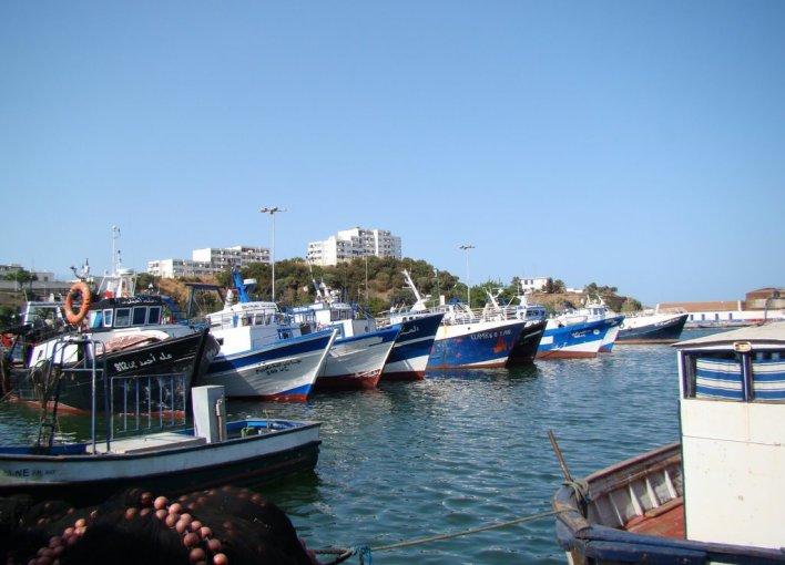 Tunisie : Des dizaines de pêcheurs demandent l'asile politique en Algérie! 14011109.jpg?zoom=2