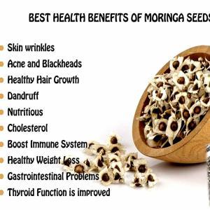 500 Organic Moringa Seed 100g