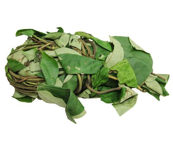 Fresh Uziza leaf  bundle