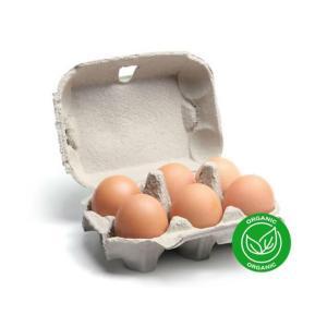 Organic Local brown eggs X 6