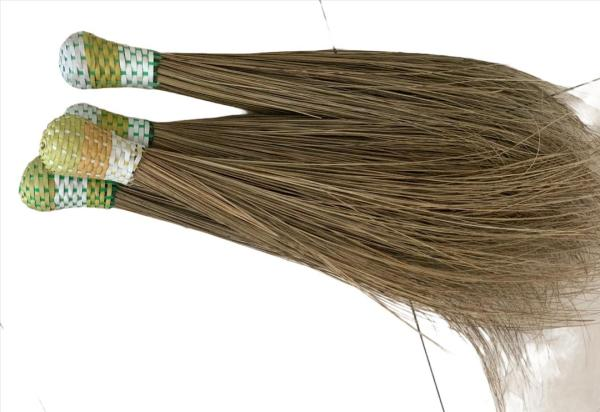 African Broomstick