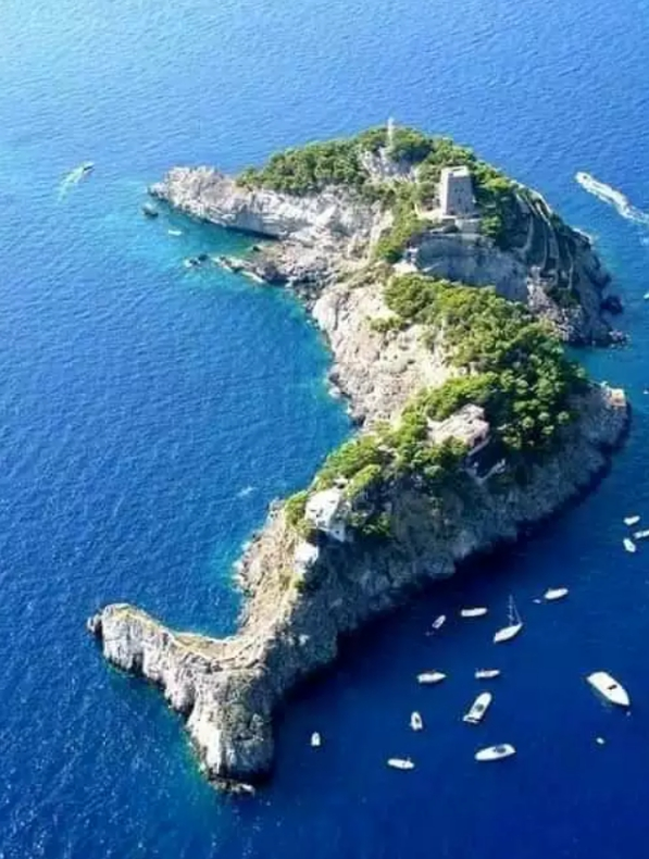 Island in a form of fish