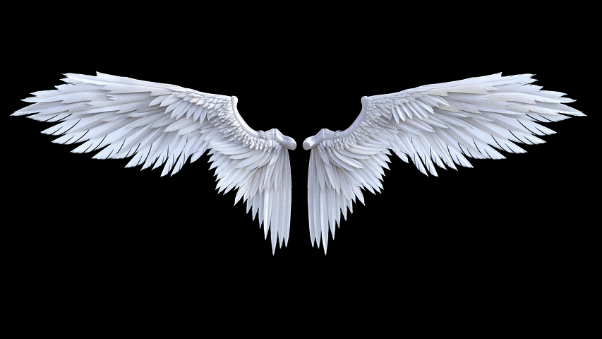 Protective angel wings