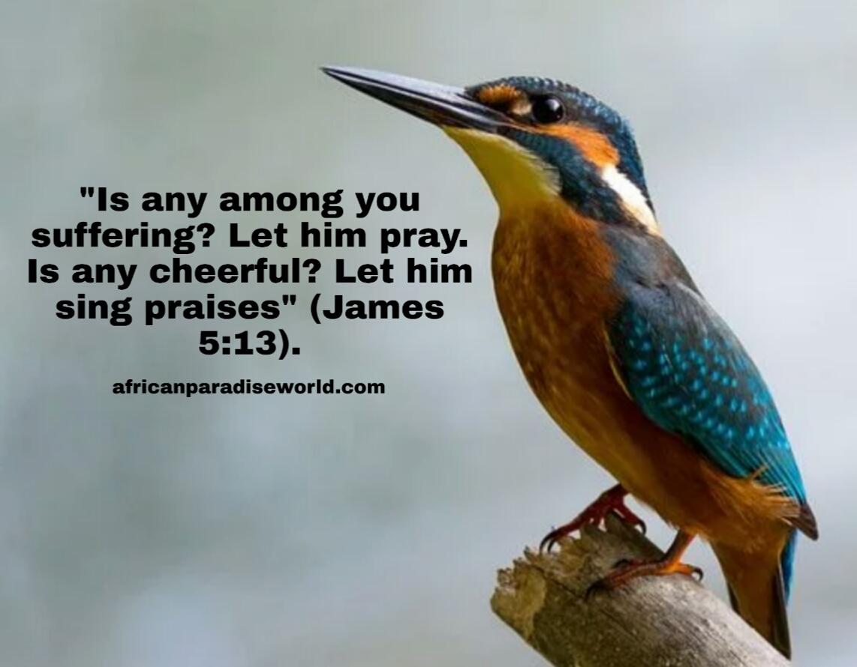 Bible verses that praise God