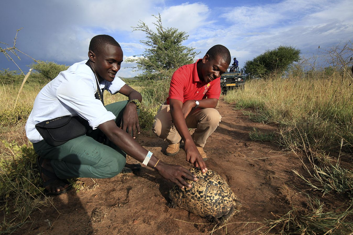 An African People & Wildlife Environmental Scholar learns about tortoise biology