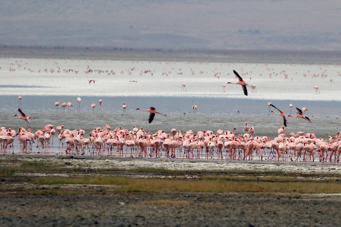 The Greater Lake Natron landscape in northern Tanzania