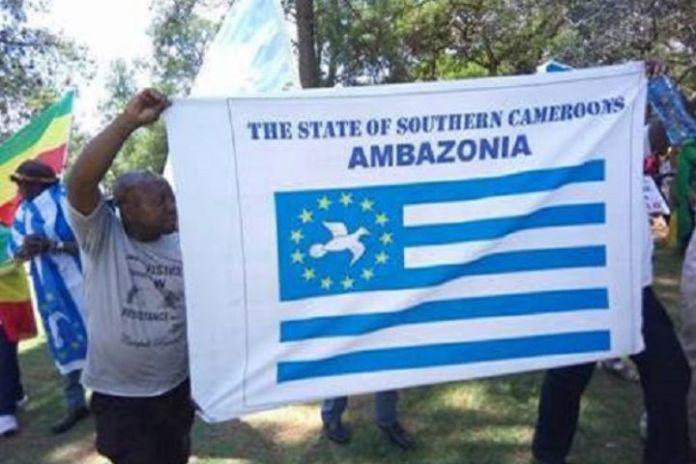 Swiss govt mediating in Cameroon, Ambazonia crisis