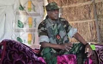 Chad says wont join regional operations against Boko Haram
