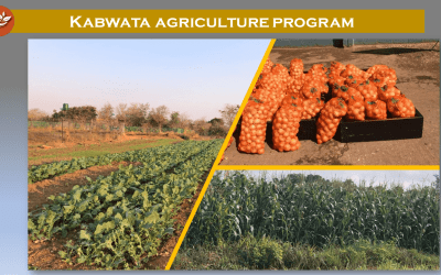 The Kabwata Orphanage and Transit Center: Growing Food for Healthy Growing Children