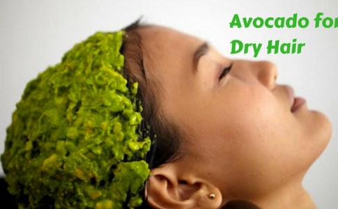 learn-make-homemade-moisturizing-avocado-treat-dry-hair